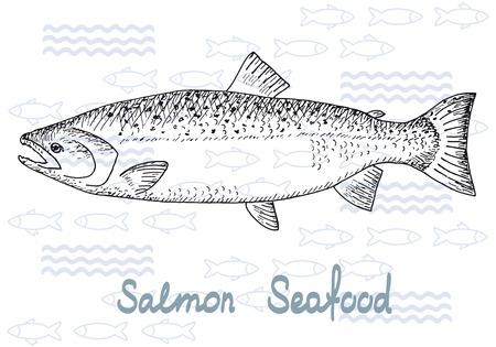 Fish hand getekende schetsen. Vintage design met zalm illustratie. Vissen en zeevruchten achtergrond.