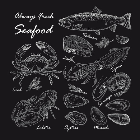 vintage seafood restaurant illustration. Hand drawn chalkboard banner. Great for menu, banner, flyer, card, seafood business promote. Illustration