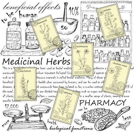 natural healing: Hand drawn healing herbs postcards. Vintage design with medicinal herbs and pharmacy illustration.