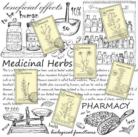Hand gezeichnet Heilkräuter Postkarten. Vintage-Design mit Heilkräutern und Pharmazie Illustration.