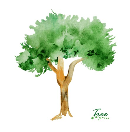 tree branch: Watercolor tree with green leaves. Hand painted realistic illustration. Vintage design tree on white background.