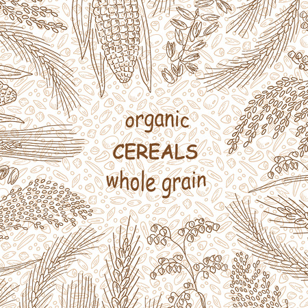 Sketched hand drawn cereals.