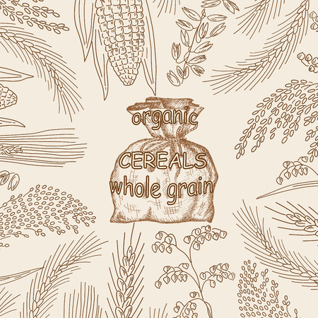 Sketched hand drawn cereals, flour in burlap sack vector illustration