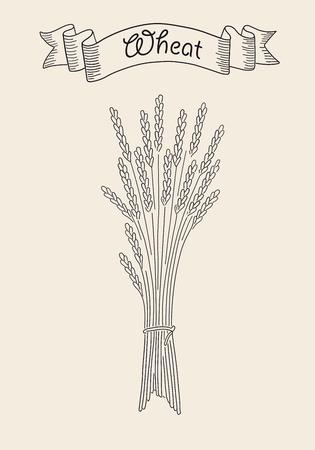 Bunch of wheat. Иллюстрация
