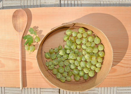 Juicy ripe berries of a gooseberry Banco de Imagens