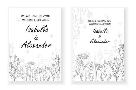 Wedding invitation frames with herbs and wild flowers. Hand drawn vintage vector illustration. Line art style. Иллюстрация
