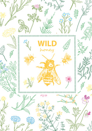 Frames with honey bee, hive, herbs and wild flowers. Hand drawn vintage vector illustration. Line art style. Rustic template, greenery color. Ilustração