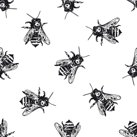 Seamless pattern with honey bee. Vector hand drawn illustration background. Flyer, booklet advertising and design.