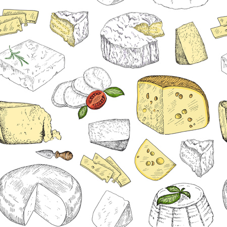 Hand drawn sketch cheese vintage seamless pattern. Vector illustration background. Natural dairy products. Line art style.
