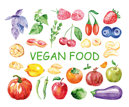 Watercolor vegan food. Hand painted realistic illustration on paper. Vintage design food isolated on white background.