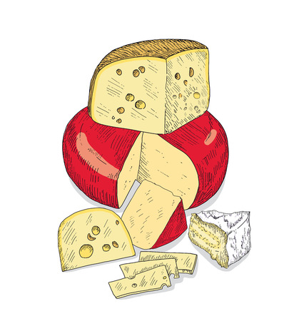 Several types of cheese together. Vector sketches hand drawn illustration on a white background. Flyer, booklet advertising and design. Line art style. Ilustração