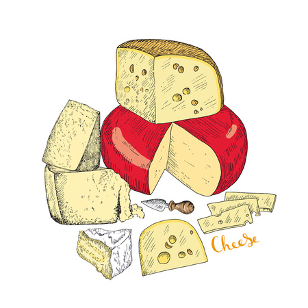 Several types of cheese together. Vector sketches hand drawn illustration on a white background. Flyer, booklet advertising and design. Line art style. Иллюстрация