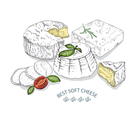 Best Soft Cheese. Vector sketches hand drawn illustration on white background. Flyer, booklet advertising and design. Line art style.