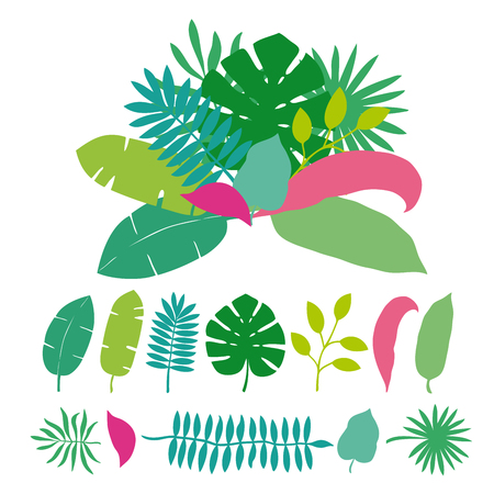 Bouquet of tropical leaves palms, trees. Vector illustration isolated on white background. Flyer, booklet advertising and design. Perfect for flyer design, booklets, advertising. 向量圖像