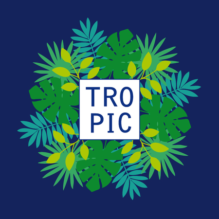 Tropical leaves of monstera and palm trees. Abstract green foliage with square border. Dark blue background. Perfect for flyer design, booklets, advertising.
