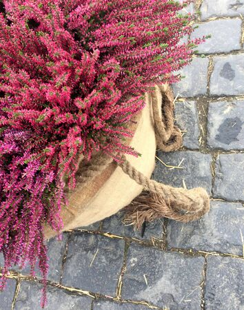Decor with fall heather flowers in linen bags.