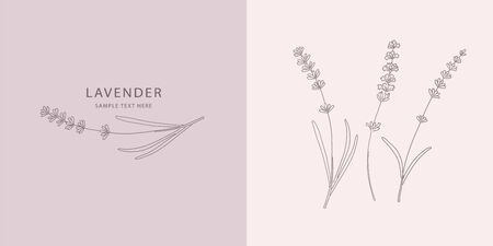 Card with Lavender. Vector sketches hand drawn illustration background. Poster, booklet advertising and design. Line art style.