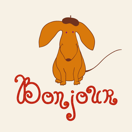 bonjour: Dachshund on light background with a lettering Bonjour