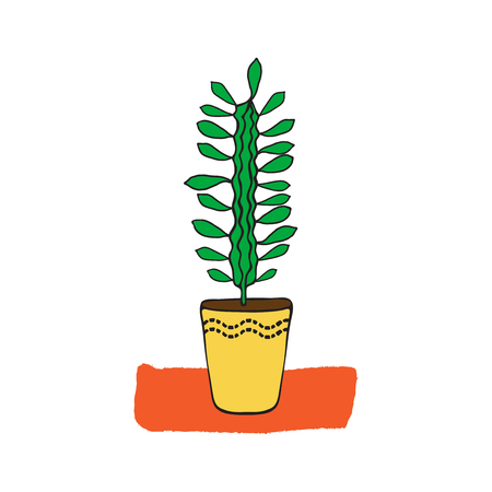 milkweed: Hand drawn milkweed in a pot. Design element for poster, t-shirt, textile. Interior plant.