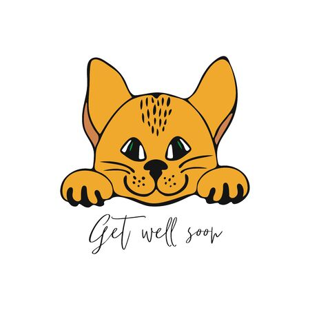 Get well soon greeting card with a cat. Design element for motivation greeting card.