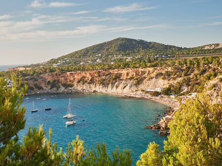 aerial view of natural park and beach of cala D´hort in Ibiza, Balearics,Spain