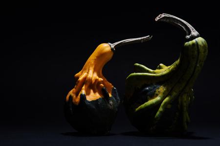 Decorative pumpkin isolated on black background Stock Photo