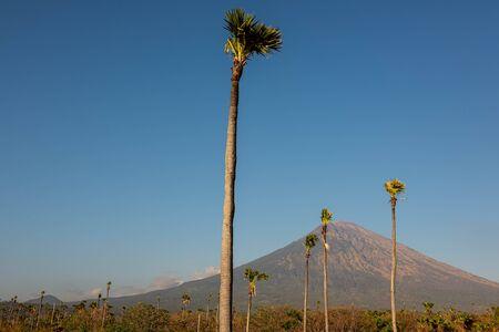 View on Agung vulcano, Bali, Indonesia