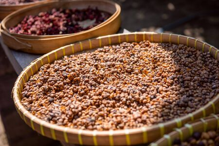 Raw beans of luwak coffee. Bali, Indonesia