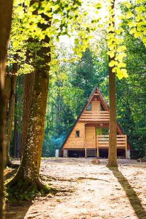 Tranquil forest scene. Wooden house in a forest Banque d'images