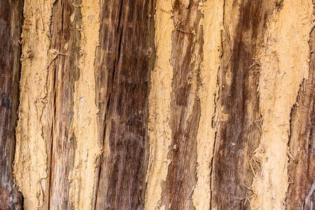 timbered wooden wall. close up detail image of house made of wood logs Stock Photo