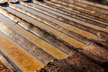 Sea Salt manufactures. producing sea salt in Bali, process. Salt making process