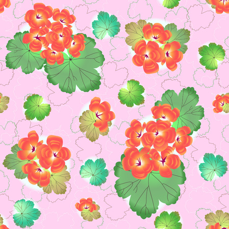 Geranium, pelargonium on pink, vector. Seamless pattern for textile, paper, cardboard and web page decoration.
