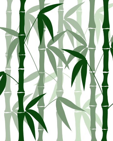 abstract bamboo silhouettes on the white backgroun vector Vector