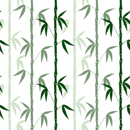 abstract bamboo seamless pattern on the white background vector Vector
