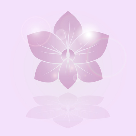stylized silhouette of orchid flower Vector