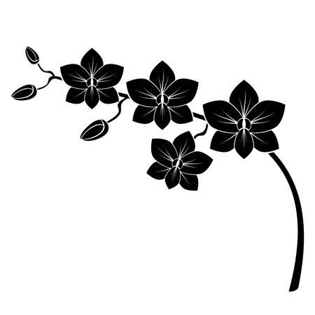 outlines: orchid branch silhouette vector for design