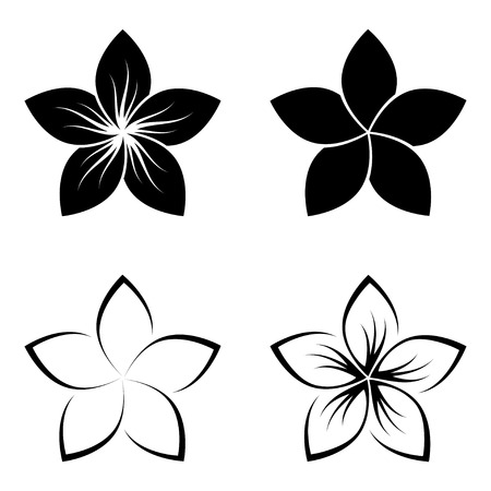 four frangipani silhouettes for design vector