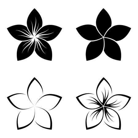 plumeria on a white background: four frangipani silhouettes for design vector