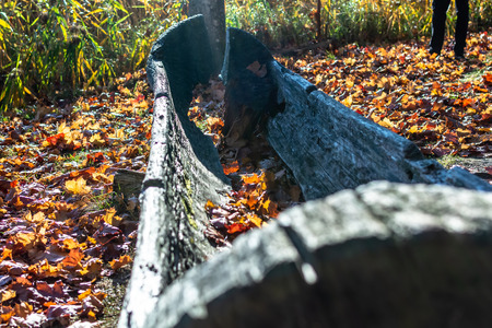 Old wooden boat sprinkled with orange autumn leaves in a reconstructed Stone Age settlement of Archaeological Site in Gauja National Park, Araisi, Latvia.