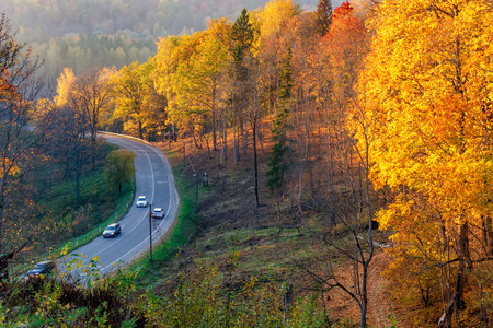 Aerial view of road with cars in beautiful autumn forest. Landscape with rural road and red, yellow and orange trees. Highway through the Gauja National park, top view. Nature background. Imagens