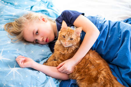 Ginger fluffy cat with little sleeping girl on the blue bed. Banco de Imagens