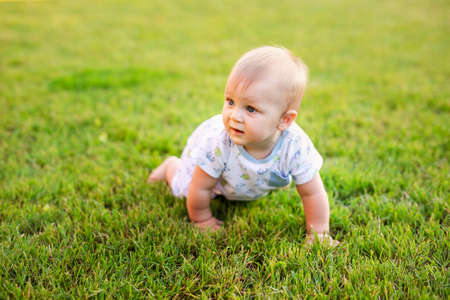 Summer portrait of happy funny baby boy outdoors on grass in field. Child learning to crawl. Banco de Imagens