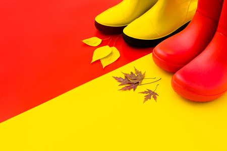 Two pairs of bright rubber boots-red and yellow are on a contrasting background and in front of them are autumn leaves. Place for text. Concept