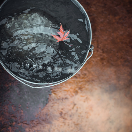 """A red maple leaf floats in a tin bucket on the surface of the water with falling raindrops. Top view, copy space. Concept """"Autumn has come""""."""