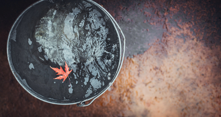 A beatiful red maple leaf floats in a tin bucket on the water surface, on which rain drops fall.  Top view, copy space. Concept
