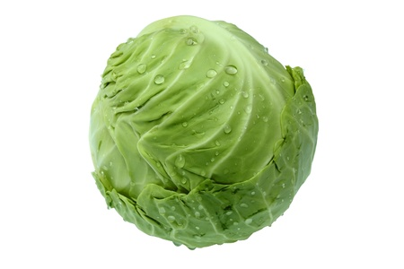 head of green cabbage vegetable isolated on white background  photo