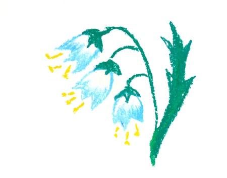 Bluebell hand drown illustration on the white background illustration