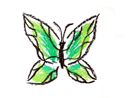 green butterfly illustration on white background illustration