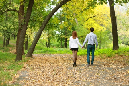 hands holding tree: beautiful happy young couple backside outdoors in autumn park under trees