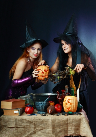 Two charming halloween witches making potion Stock Photo - 17068174